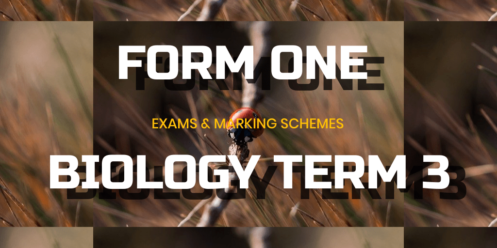 EXAM FORM ONE END OF TERM TWO EXAMINATIONS