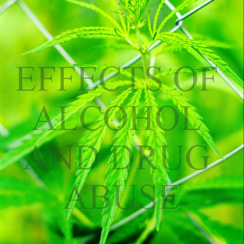 EFFECTS OF ALCOHOL AND DRUG ABUSE